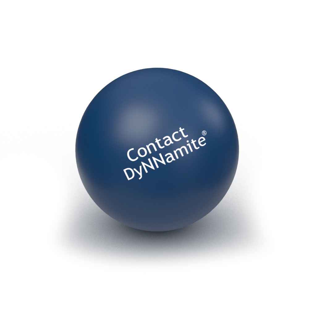 Contact DyNNamite DNN Specialists