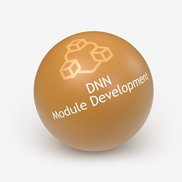 DNN Module Development